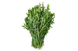 Rucola salat (Arugula)