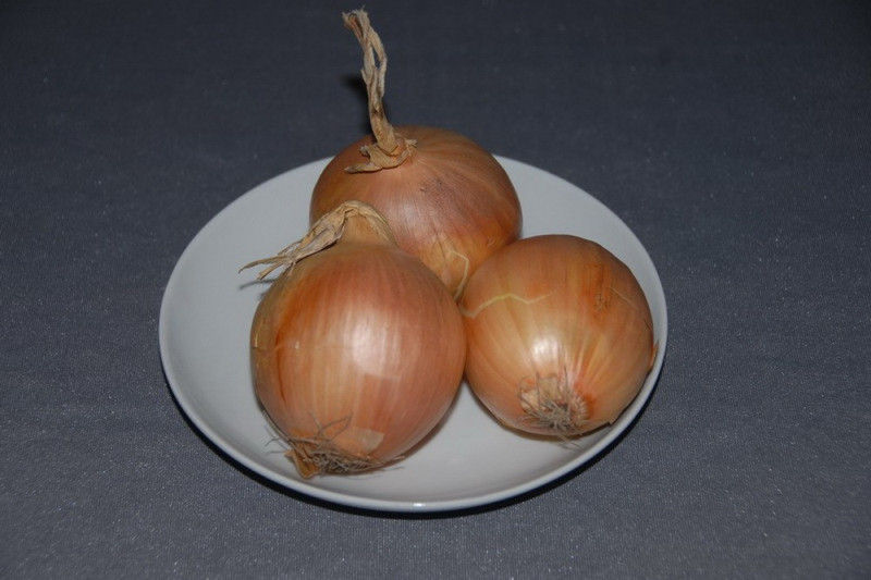 Løg (Onion Yellow Sweet)
