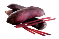 Rødbede Forono (Beta vulgaris)