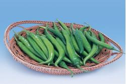 Chili Etna Heat (Capsicum Annuum)