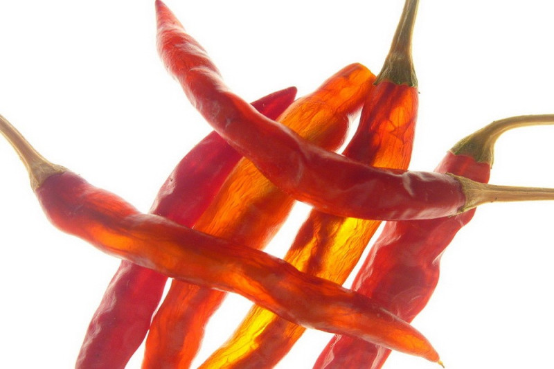 Chili Aji Red (Capsicum Baccatum)